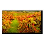 "NEC X-Series MultiSync X554UN-2 - 55"" LED Display - 1080p"